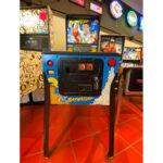 Baywatch Pinball Machine Estero FL 1