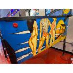 Baywatch Pinball Machine Estero FL 5