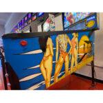 Baywatch Pinball Machine Estero FL 6