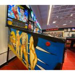 Baywatch Pinball Machine Estero FL 7