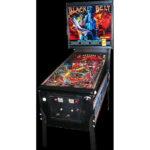Black Belt image 2 150x150 - Baywatch Pinball Machine