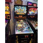 No Fear Pinball Clearwater