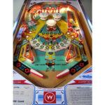 Aztec Pinball Machine 1