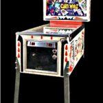 Card Whiz Pinball Machine