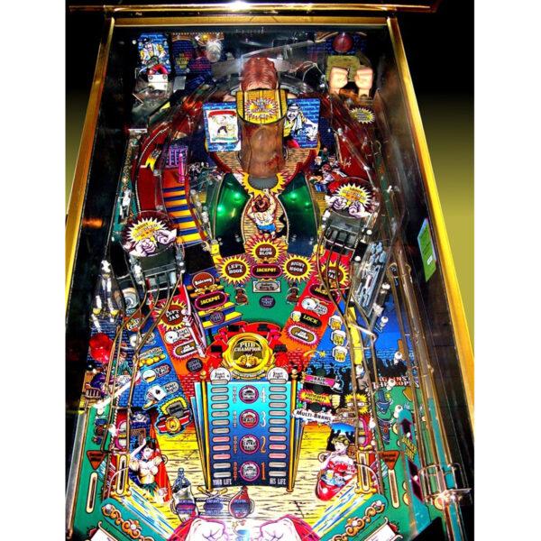 Champion Pub Pinball Machine