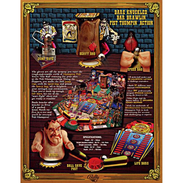 Champion Pub Pinball Machine Flyer