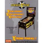 Striker Xtreme Pinball Flyer