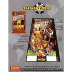 Striker Xtreme Pinball Flyer 2