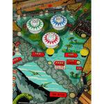 Four Million BC Pinball Machine 9