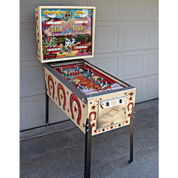 Flip Flop Pinball Machine