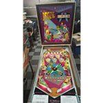 Doozie Pinball Machine 2