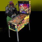 The Party Zone Pinball Machine